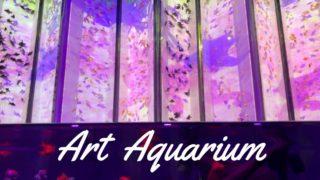 アートアクアリウム